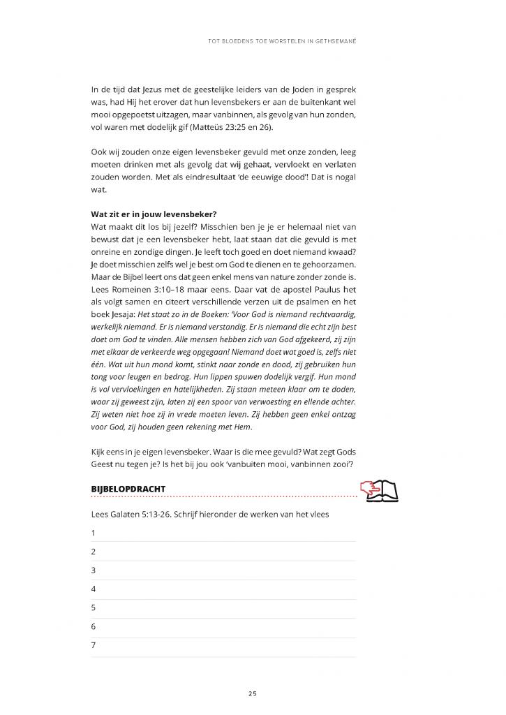 https://www.vrijzijn.nl/wp-content/uploads/De-laatste-18-uur-proefversie_Pagina_25-725x1024.png